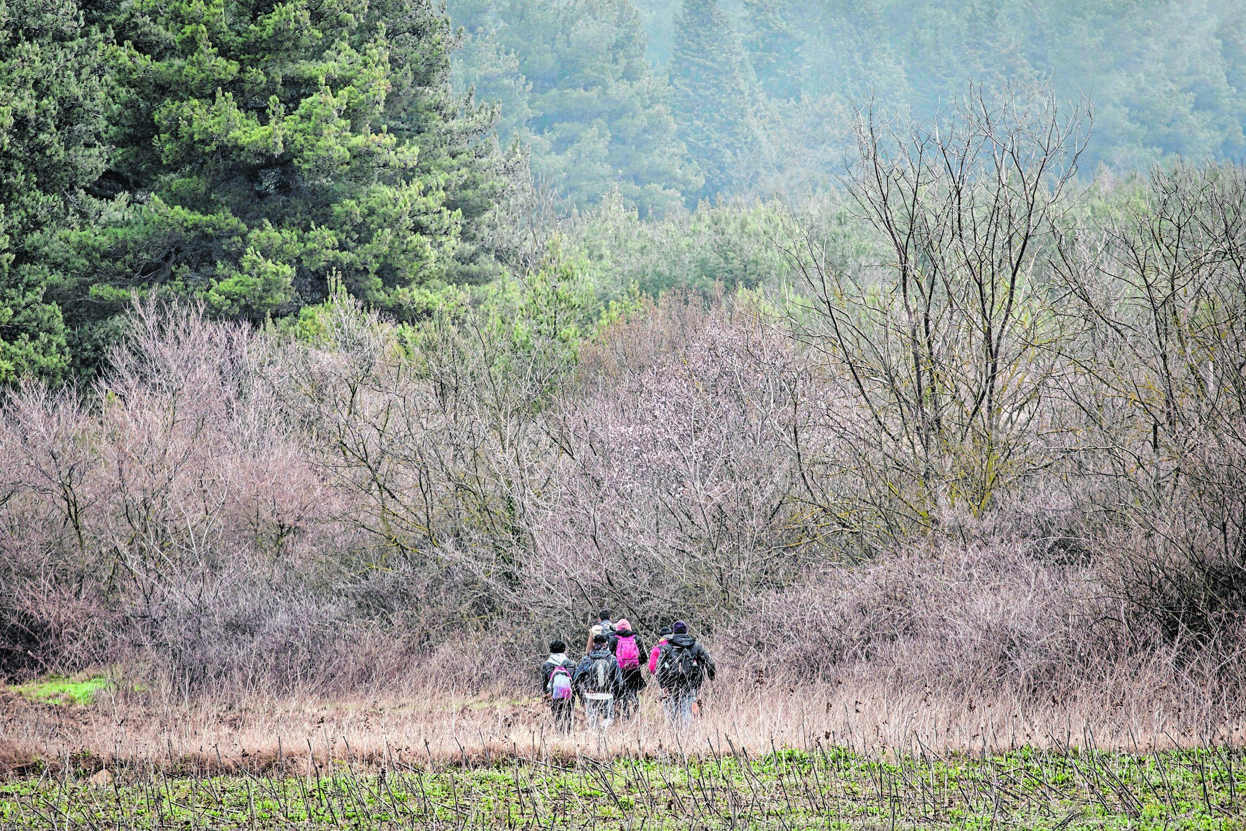 """Geflüchtete versuchen über die """"Grüne Grenze"""" nach Kroatien zu gelangen."""