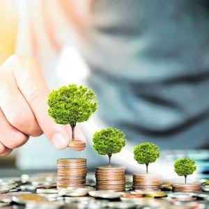 Symbolbild für grüne Geldanlage