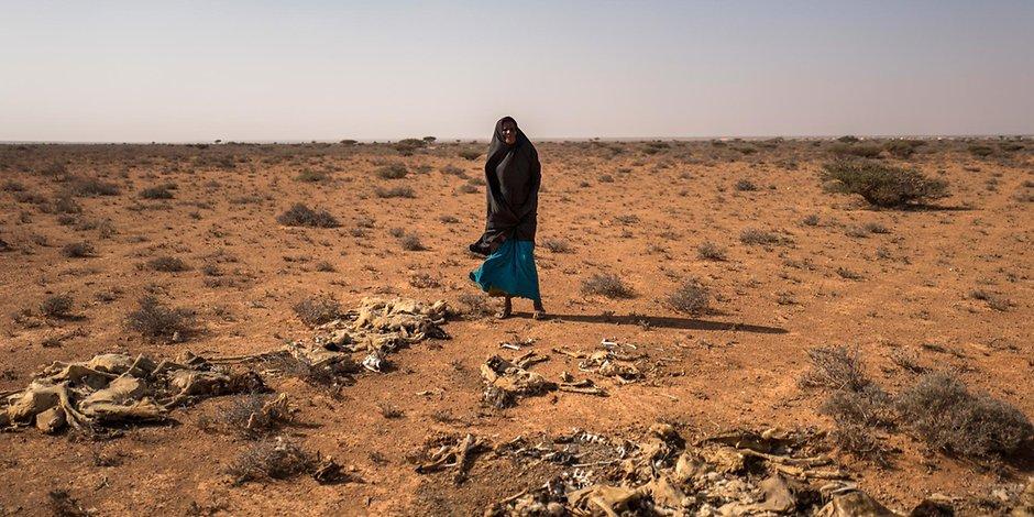 Somalische Hirtin mit verendeten Ziegen: Der Klimawandel beraubt wohl Millionen menschen ihrer Lebensgrundlage.