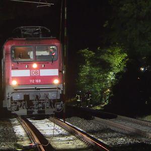 Ein umgestürzter Baum hatte die Oberleitung zerstört – 49 Fahrgäste wurden evakuiert.