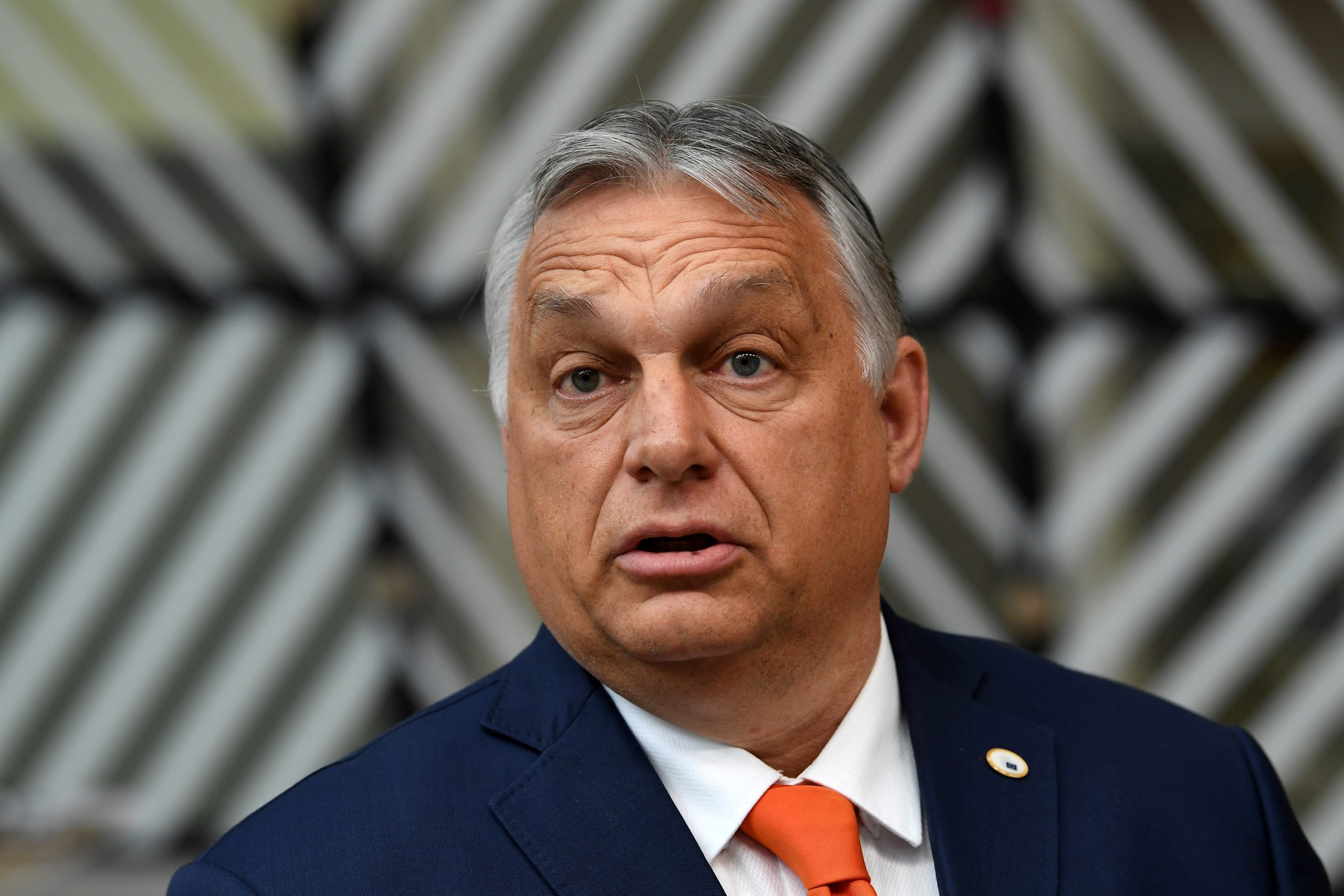 Auf Ungarisch: Hamburger Verlag will Orban aufklären | MOPO