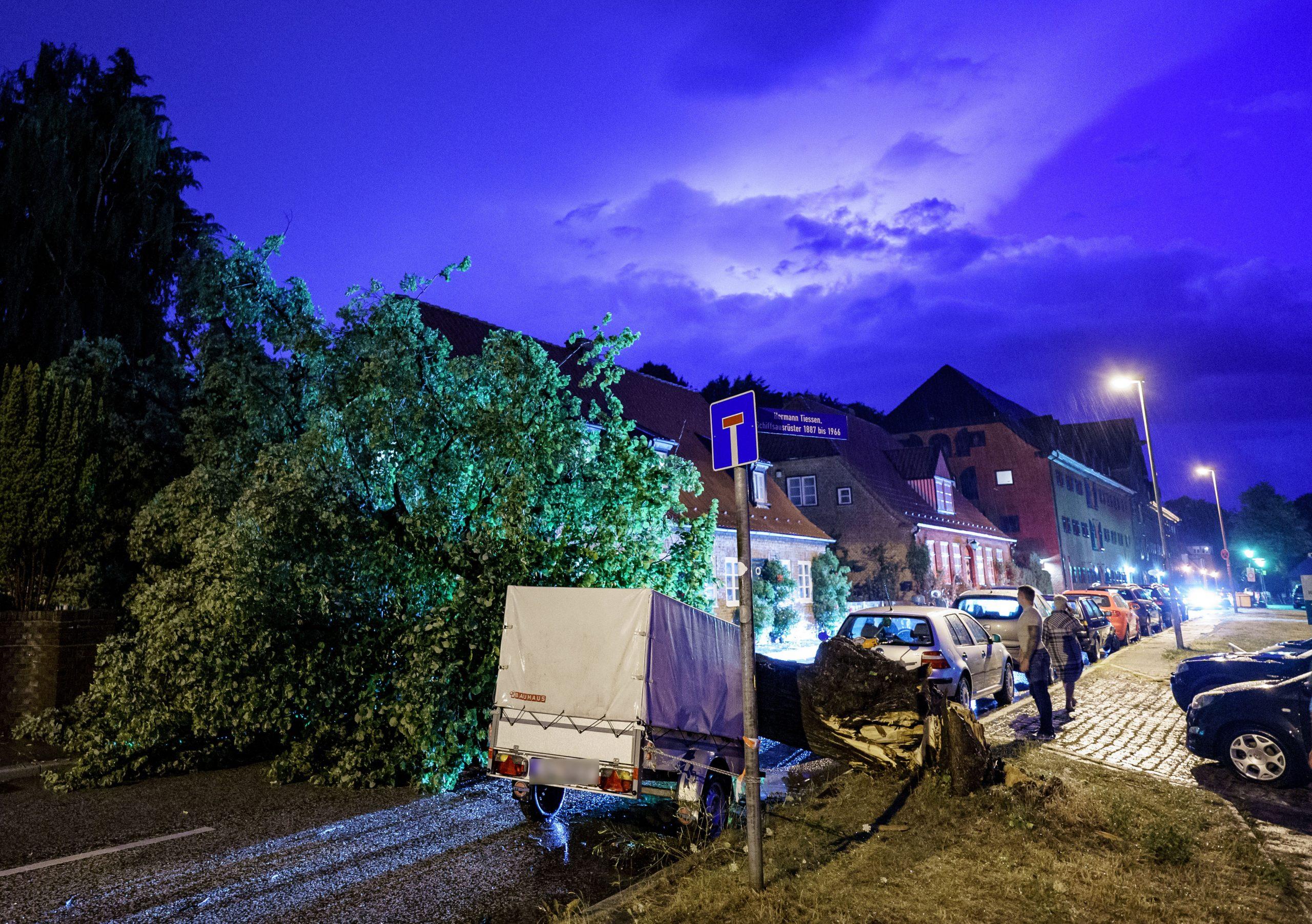 Ein umgekippter Baum versperrt die Straße in Kiel