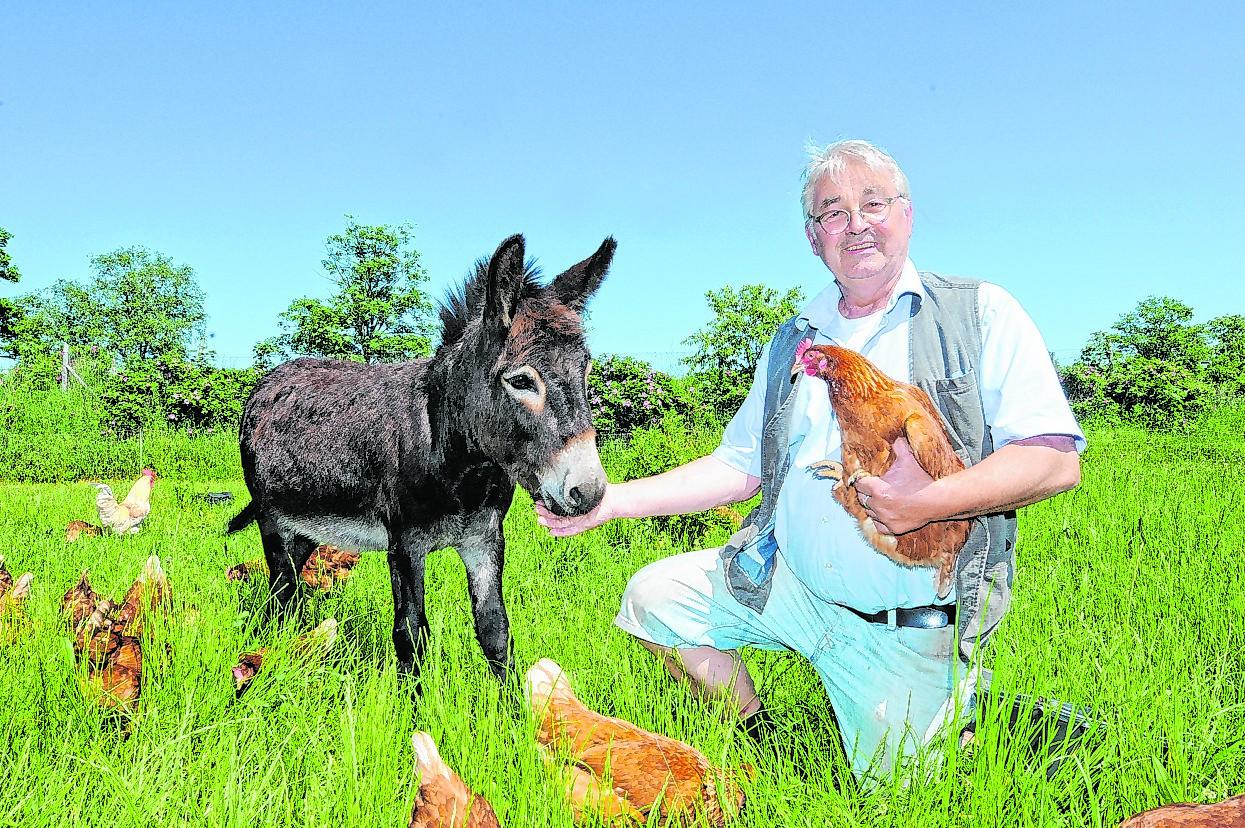 Esel Kasper mit seinem Chef, dem Bio-Landwirt Thomas Scharmer.