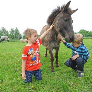 Tayler (l.) und Iron spielen mit einem Pony.
