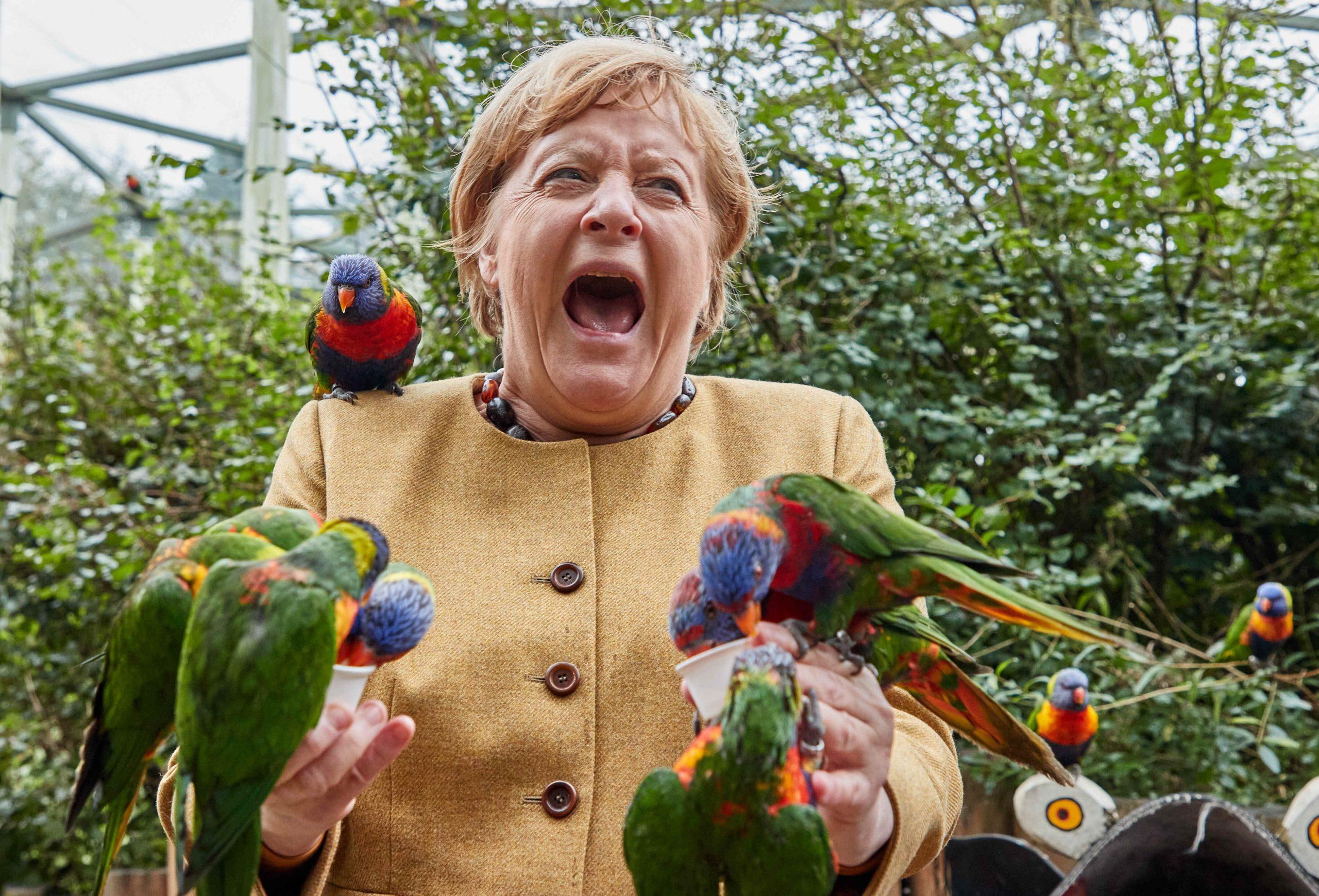 Hatten sichtlich Spaß: Angela Merkel und die bunten Tierchen.