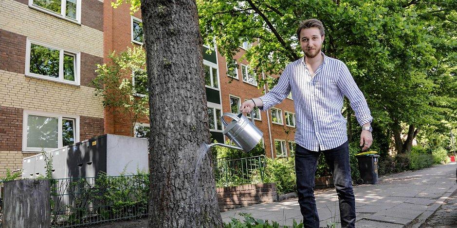 Die Hamburger Stadtbäume leiden unter dem Klimawandel. Das Bezirksamt Altona will jetzt mit Sensoren messen, wie viel Wasser diese brauchen. (Symbolbild)
