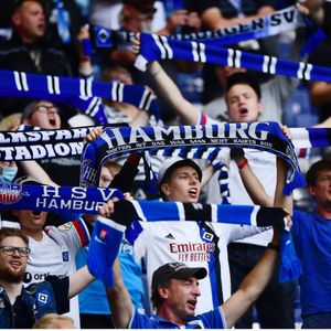 HSV fans
